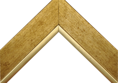 N505009
